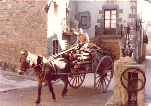 480 Gent del poble - Josep Bernadet Soler El Ferraró amb el c