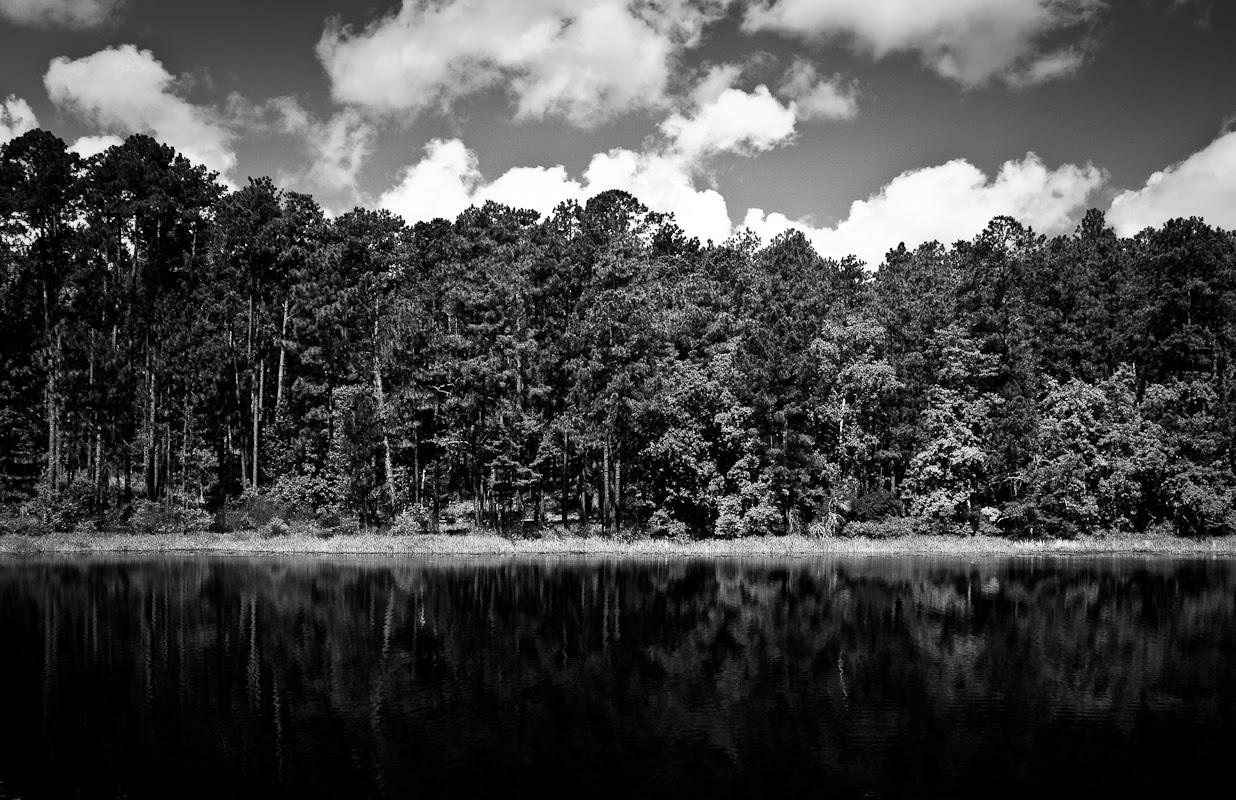 Black And White Landscape Photographers Landscape Ideas