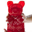 The World's Largest Gummy Bear: A 5 pound gummi bear!