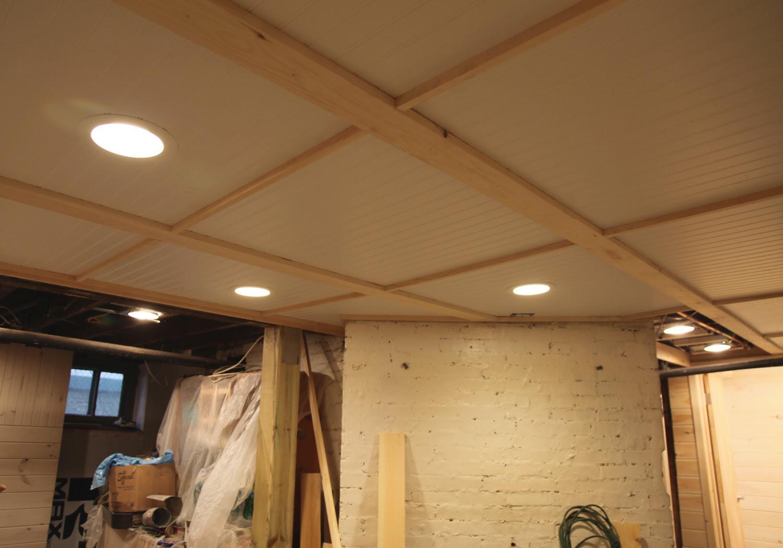 Bat Ceiling Options Design Builders