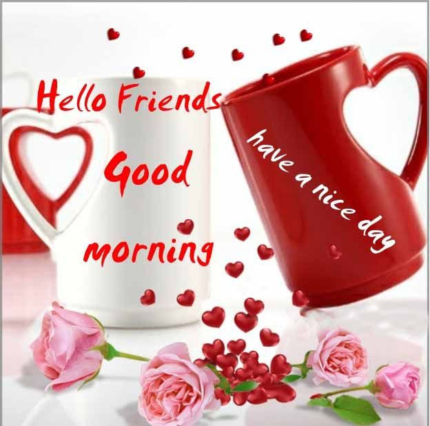Hello Friends Good Morning Have A Nice Day Pictures Photos And