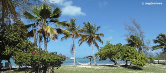 Anegada, BVI - Island and Travel Information for Anegada in the British Virgin Islands