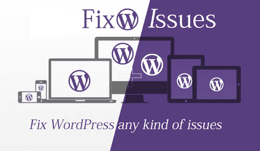 I will fix any kind of WordPress website issue and error
