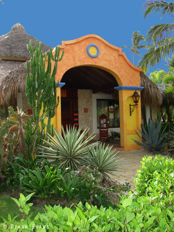 Punta Cana Dominican Republic 2011 025