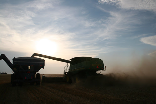 A combine dumps on the go as the sun goes down