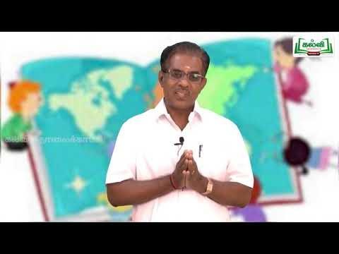 6th Social Science Bridge Course மனிதனின் பரிணாம வளர்ச்சி  நாள் 3&4 Kalvi TV
