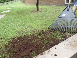 raking in the coffee grounds