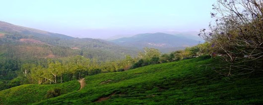 Tourist places in Munnar, Munnar Tourism, Munnar sightseeing, Places to visit in munnar