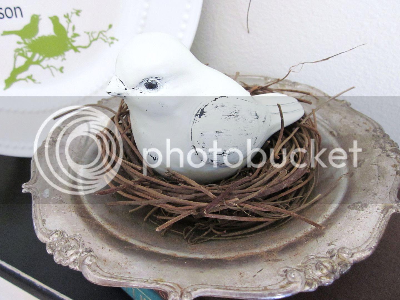 Thrifty Bird's Nest