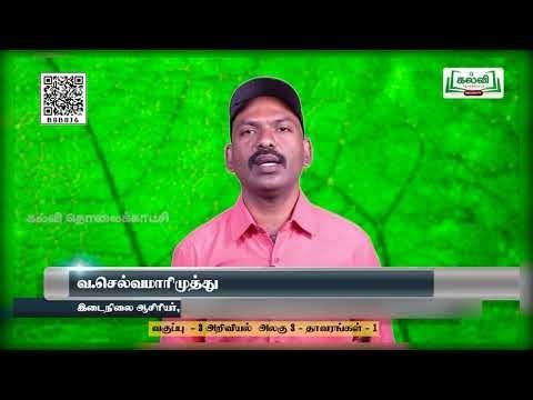 3rd Science Plants -1 தாவரங்கள் - 1 பருவம் 2  அலகு 3 பகுதி 1 Kalvi TV