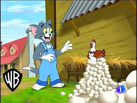 টমের সাথে ডিমযুদ্ধ | Tom and Jerry