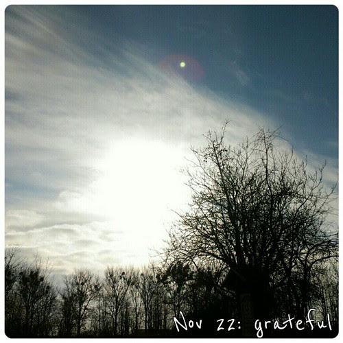 Nov 22: grateful - sunshine #fmsphotoaday #sun #sunshine #grateful