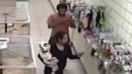 Detectives Searching for Alleged Parkland Puppy Store Thieves