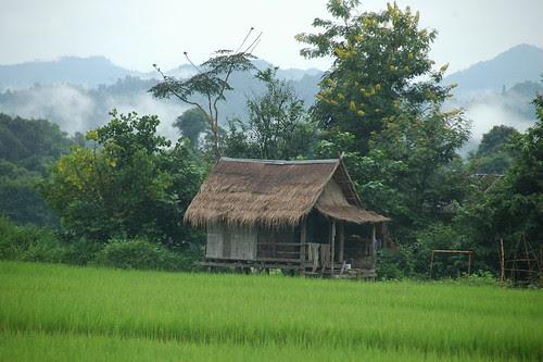 Ville de Luang Nam Tha et environs
