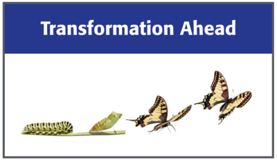 The Network Garden - Mark Sigal's Blog: Transformation Ahead: Ruminations on 2016 and Beyond