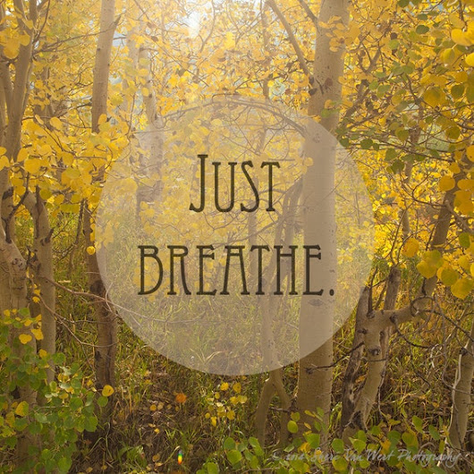 Just Breathe  Square Format Fine Art by sherivwphotography on Etsy