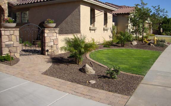 Arizona Tropical Landscape Design With Sod Palm Trees Plants