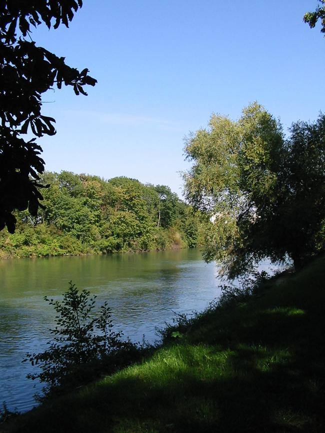 https://upload.wikimedia.org/wikipedia/commons/6/68/Bord_de_la_Marne.jpg