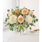 Flower Delivery by 1-800 Flowers - Peach Splendor by Southern Living - Flowers & More