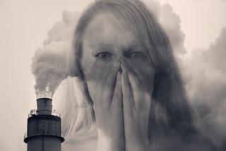 24/52 Air pollution