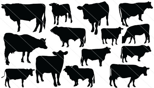 Cattle Silhouette Vector Download Cow Silhouette