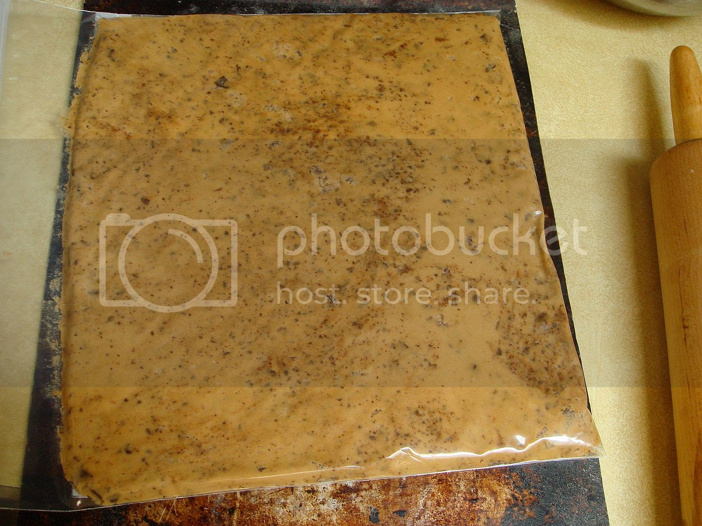 dough pressed in a ziploc bag
