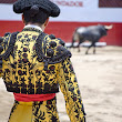The Bullfighting Debate | For and Against