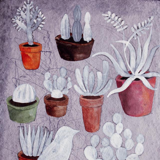 Pots & Soil