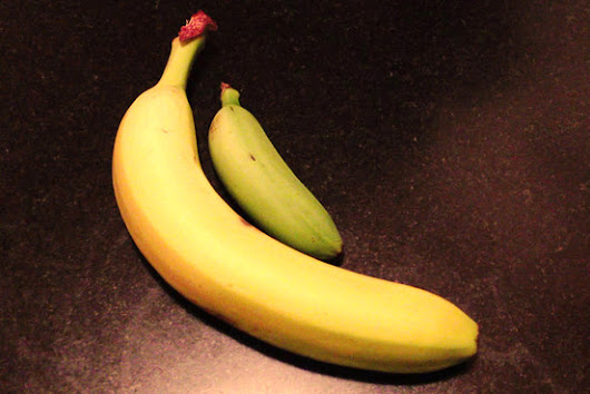Is the Time Ripe for Baby Bananas?