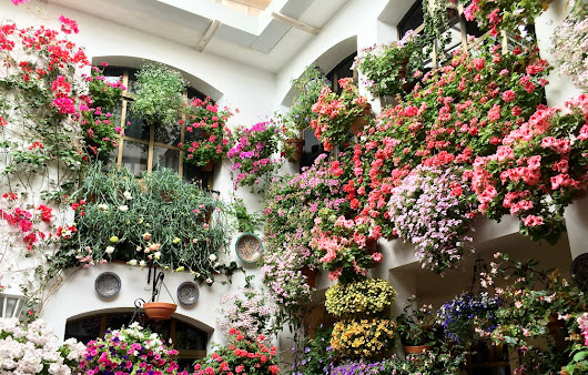 Behind Closed Doors: Why May is the Best Time to Visit Córdoba, Spain - Migrating Miss