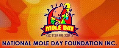 Internationella Mole dagen