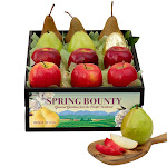 The Fruit Company Spring Bounty USDA Certified Organic Crate
