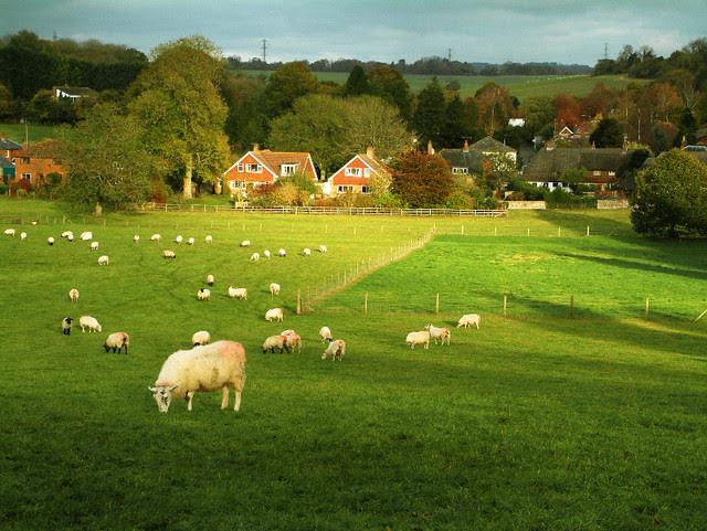 Ibthorpe village in Hampshire
