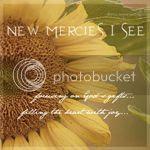 New Mercies I See