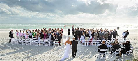 Tampa Florida Wedding Musicians, Tampa Bay String Quartets
