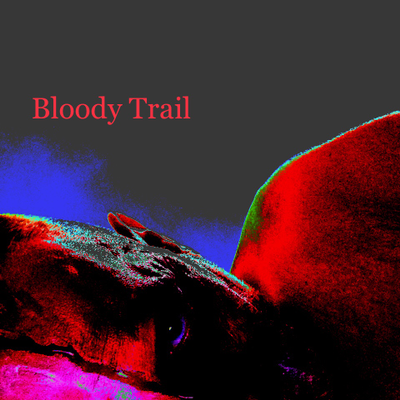 Bloody Trail (2017 Rmx) by Walter Fini