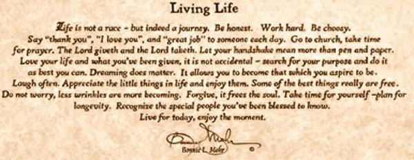 Living Life Bonnie Mohr Framed Print Aleksandarkaradarecom