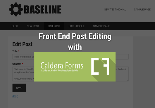 Front End Post Editing with Caldera Forms - The Stiz Media