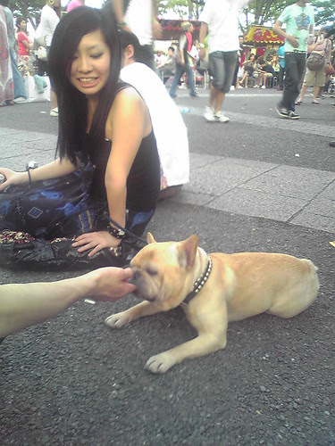 Nester the dog and its pretty owner