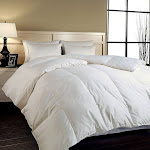 Hotel Grand Naples 700 Thread Count Hungarian White Goose Down Comforter Full - Queen