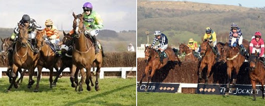 Scottish Multimedia | Cheltenham Tips
