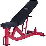 Soozier Ten Position Adjustable Home Fitness Weight Bench