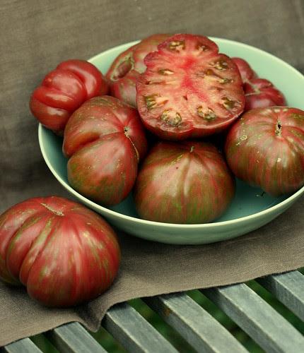 pink berk tie dye tomato