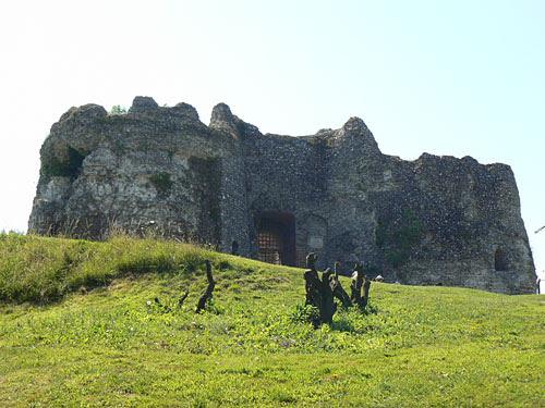 chateau en ruine.jpg