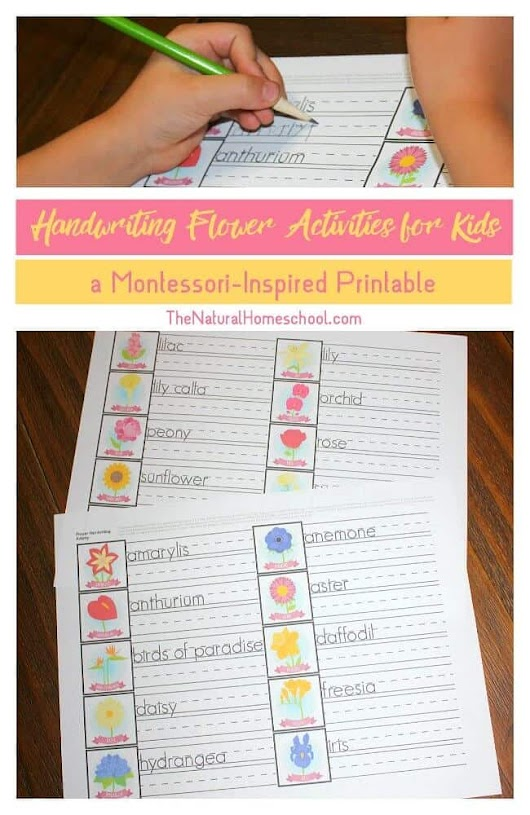 Handwriting Flower Activities for Kids {Montessori-Inspired Printable} - The Natural Homeschool