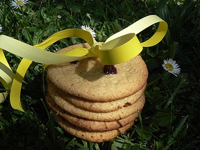 ginger cookies 2.jpg