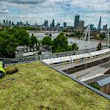 Why green roof pioneers are looking to metro mayors to pick up the baton