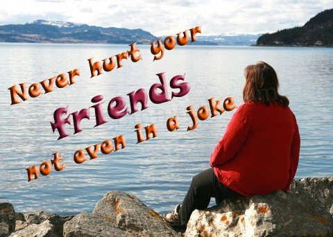 Image result for friendship never hurt
