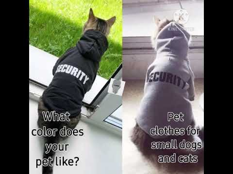Warm clothes for pets such as cats, dogs and rabbits