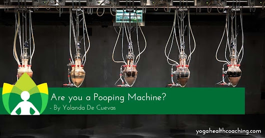 Are you a Pooping Machine? - Yoga Health Coaching